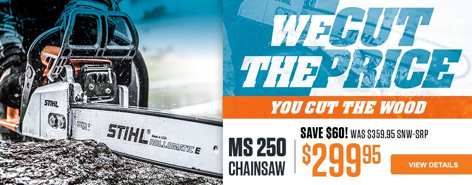 Save $60 on MS 250 Chainsaw!